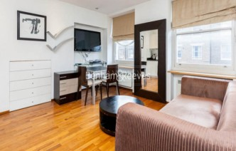 picture of Studio flat in  Upper Berkeley Street, Hyde Park, W1H